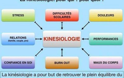 Gérer le stress en Drôme, accompagner les évènements de la vie, mettre des mots sur les maux, qu'est ce que la Kinésiologie?