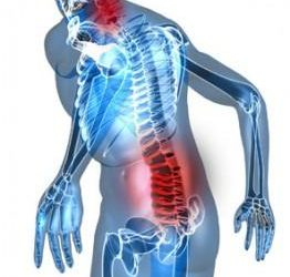 Mal de Dos, Mal du siècle! Ostéothérapie Drôme